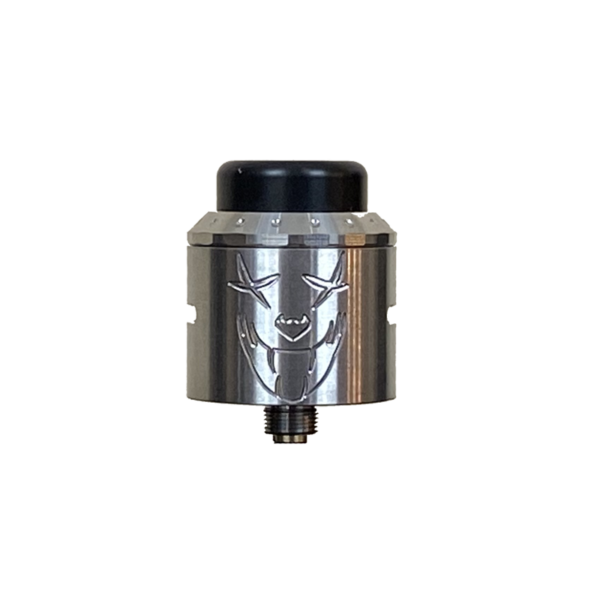 Stainless Steel Exile RDA